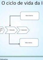Segurança da Informação - Parte 2 - O ciclo de vida da Informação
